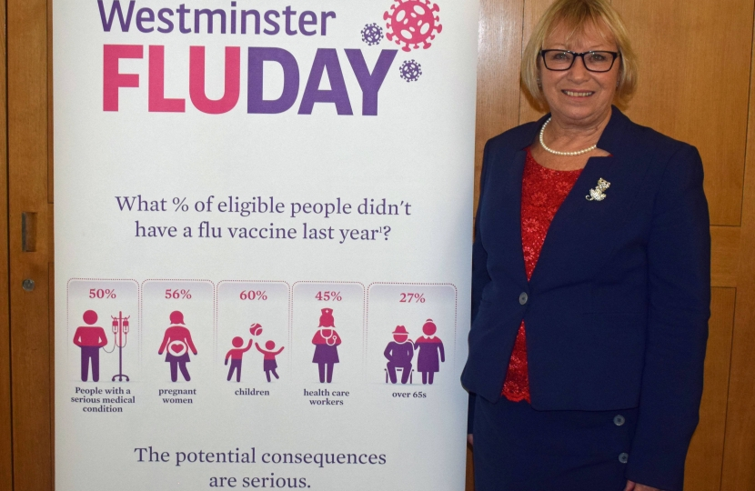 Sheryll Murray at the Westminster Flu day