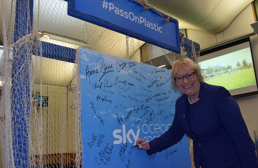 Sheryll Murray MP signs the pledge in parliament