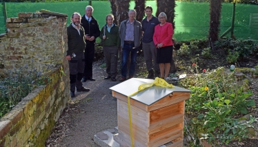 The group visit the hives in Mount Edgcumbe Park.
